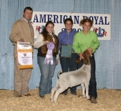 2009 American Royal Reserve Grand